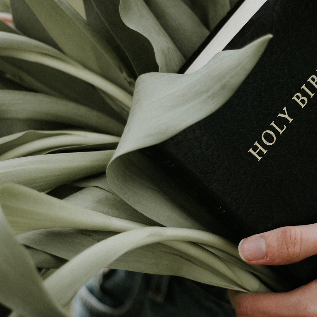 Bible-with-Leaves